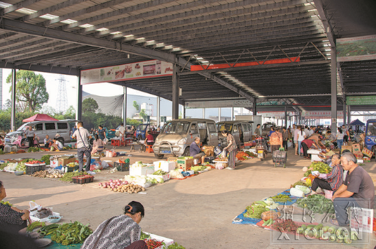 金阳便民农贸集市内一派热闹的交易景象。(记者 丁白玉 摄)