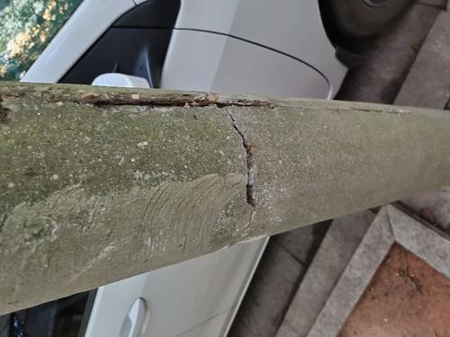 康乐村的电线杆有安全隐患
